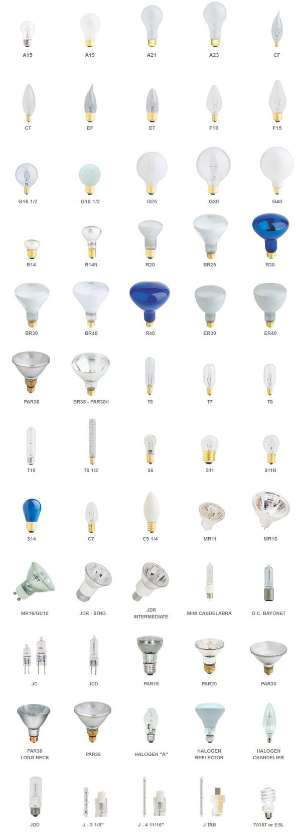Denver Lighting   Progressive Energy Solutions   Education   Bulb Types